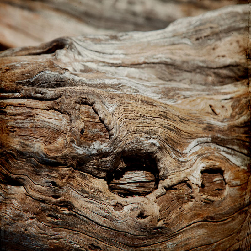 Download Old wood Grunge Background stock photo. Image of material - 39500474