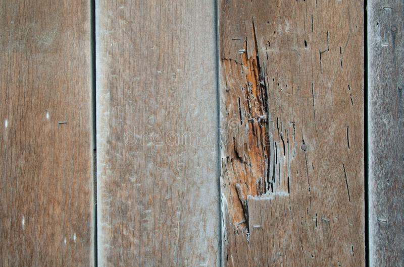 Old wood is not used because termites. stock image