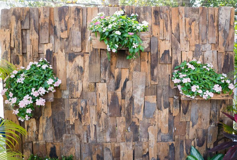 Old wood partition with flowerpots hanging in the park stock photo