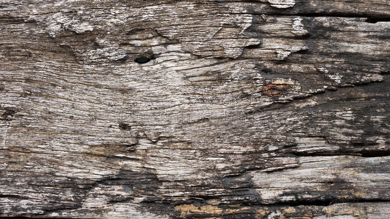 Old wood planks. Old wood planks texture background royalty free stock photo