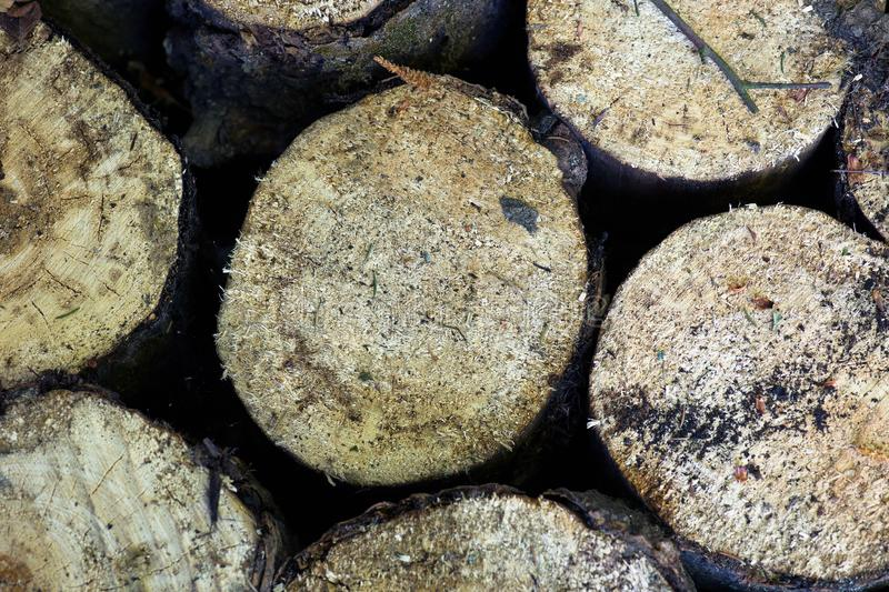 Old wood sawn into several parts royalty free stock images