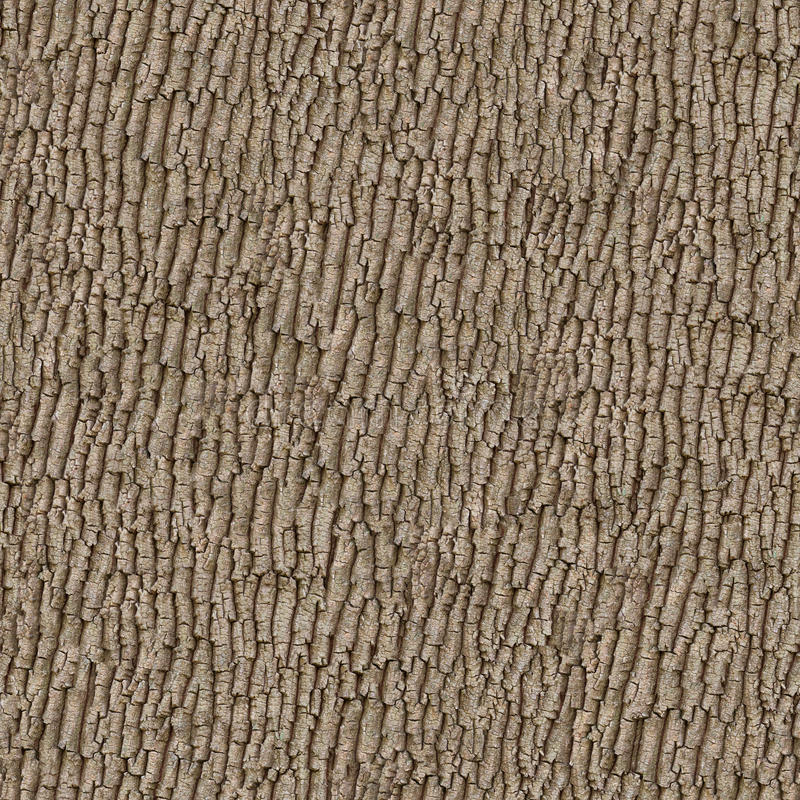 Old Wood. Seamless Texture. royalty free stock photo