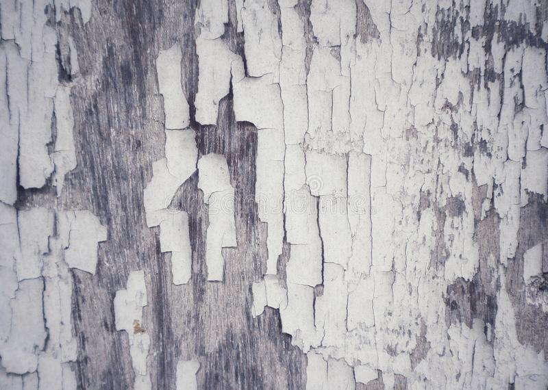 Old wood surface with white cracks, gray, abstract background, textured copy, blank space stock images