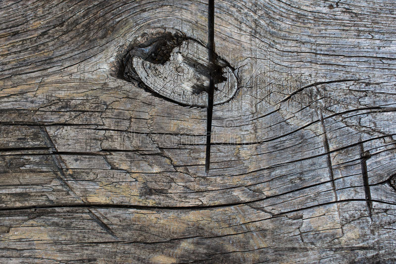 Old wood, texture. Old wood, ancient gray texture stock photos
