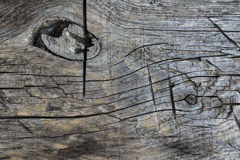 Old wood, texture. Old wood, ancient gray texture stock photo