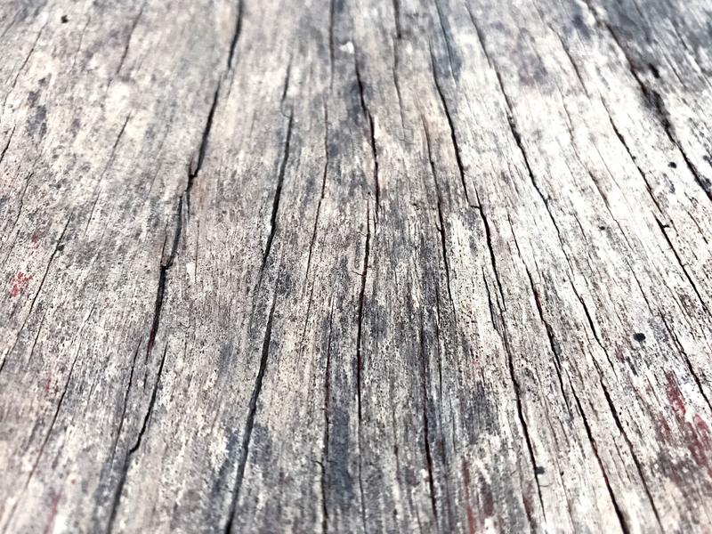 Old wood texture as a natural pattern, stock photography