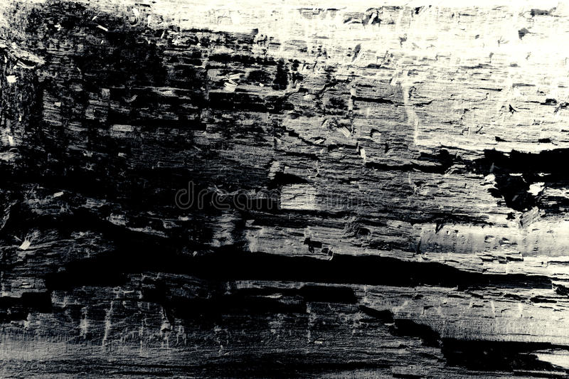 Old wood texture background black and white royalty free stock photography
