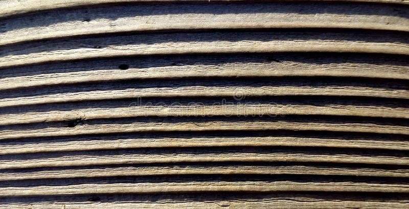 Old wood texture background. Close up wooden backgrounds. Closeup nature. Macro photography royalty free stock images