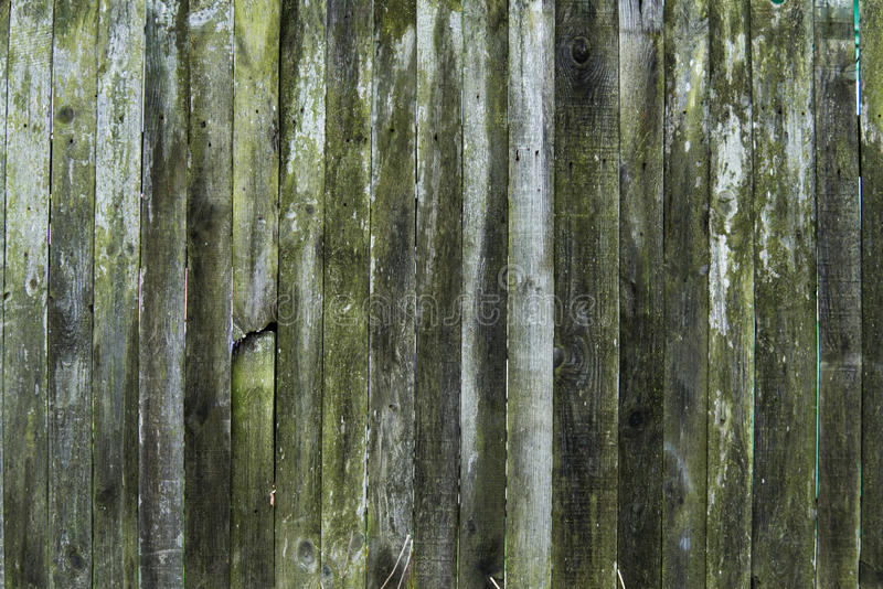 Old wood texture background, wooden board, rustic fence. stock photography