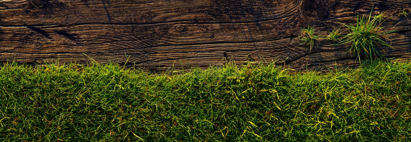 Old wood  and green grass background stock photos