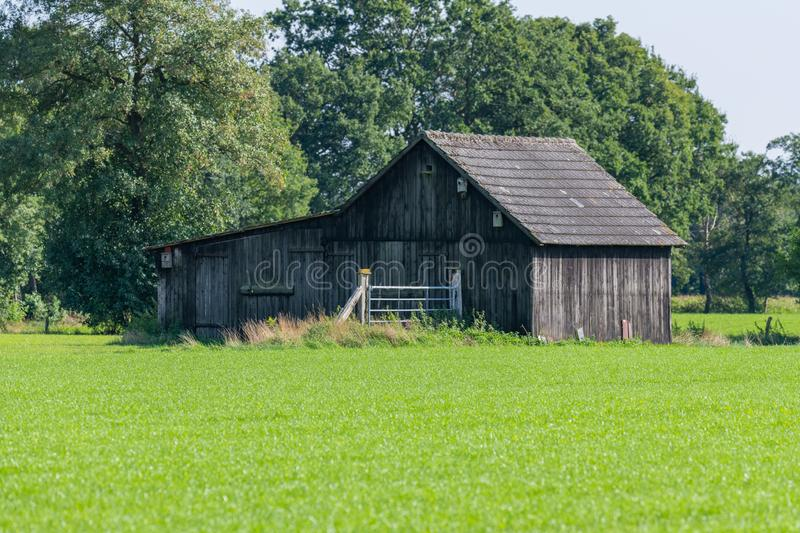 An old wooden barn in the  middle of a field with green meadow in the foreground. An old  wooden barn in the middle of a field with green meadow in the stock photography