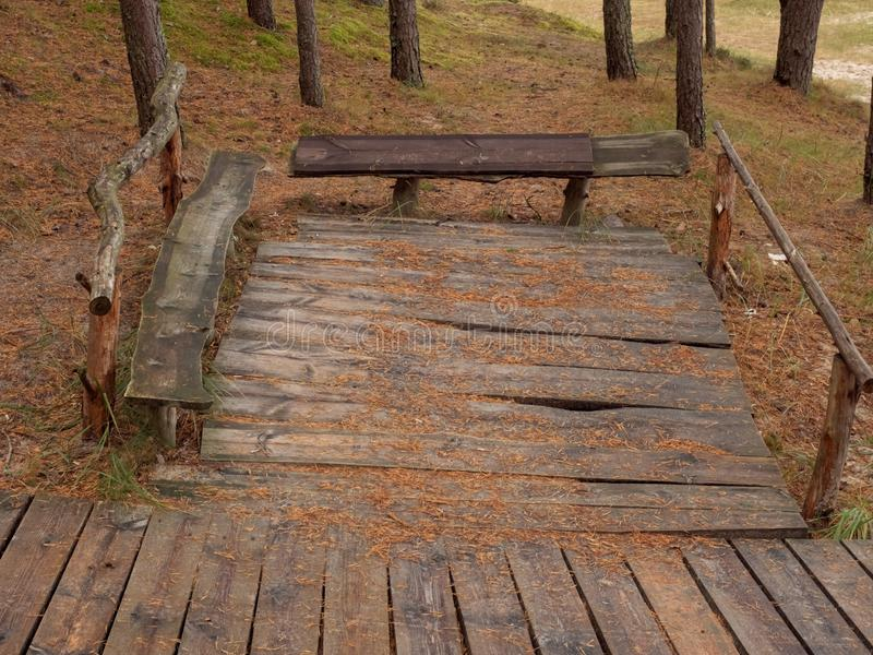 Wooden bench in a park. Old wooden bench covered with pine needles in Jurmala, Latvia stock photography