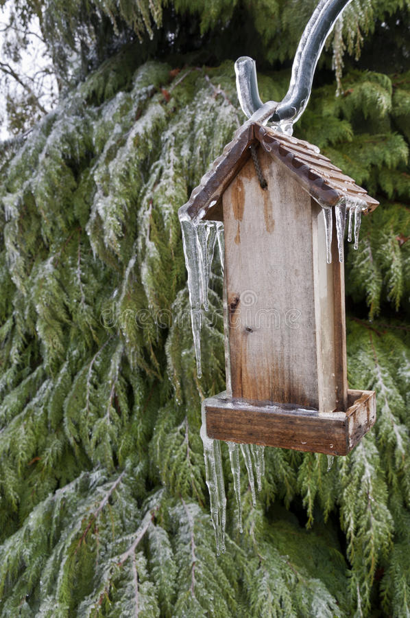 Old Wooden Bird feeder with icicles hanging in front of tree. Old wooden bird feeder with icicles hanging from post next to cedar tree royalty free stock photos