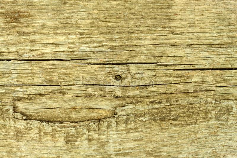 An old wooden board. Retro background. Place for text. Detail of wood structure. royalty free stock photography
