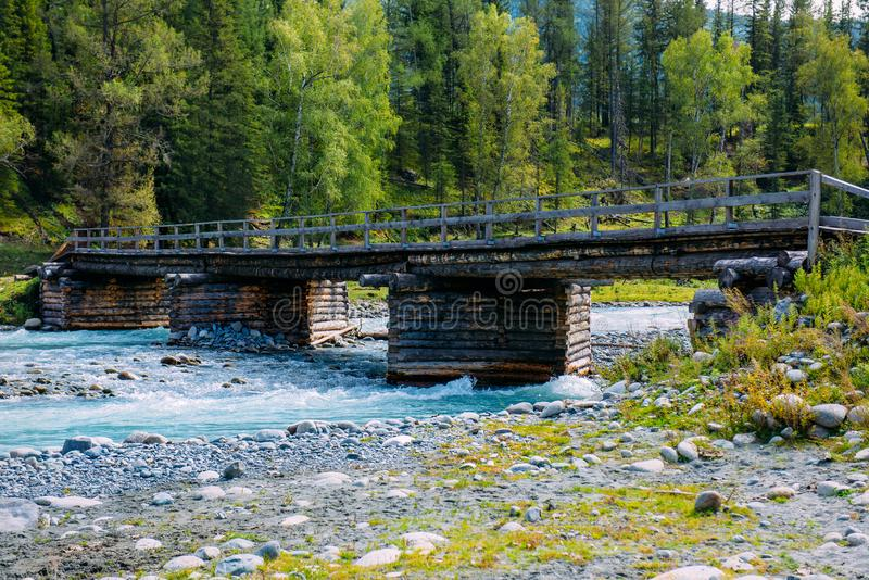 Old wooden bridge across mountain river.Altai Mountains, Russia. Sunny summer day royalty free stock images