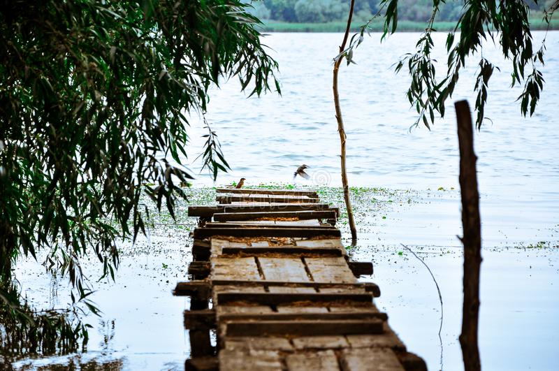 Old wooden bridge for fishing against the background of the river and green trees. Tourist town Vilkovo is a city on the water. The city on the banks of the royalty free stock images