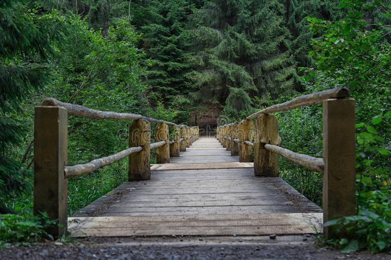 Old wooden bridge in green forest. Idyllic lonely place near lake Synevyr in Carpathian mountains, Ukraine. Sunny summer day. Front view royalty free stock image