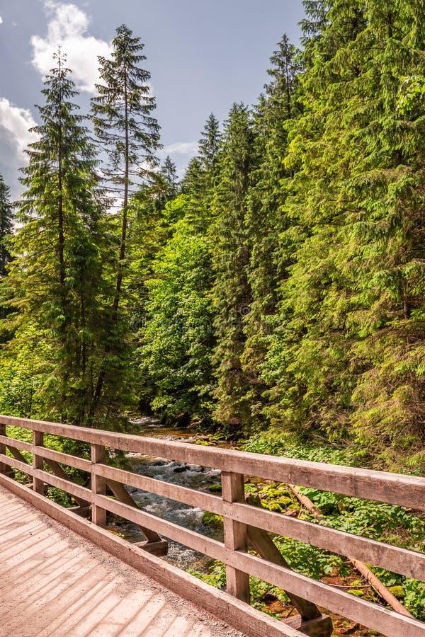 Old and wooden bridge in Koscieliska valley in Tatra Mountains. Europe royalty free stock photos