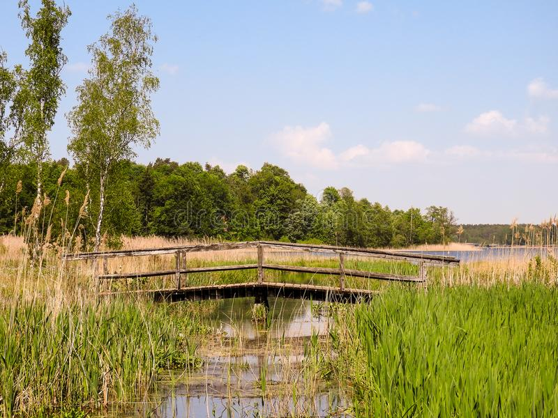 Wooden bridge over a creek royalty free stock image
