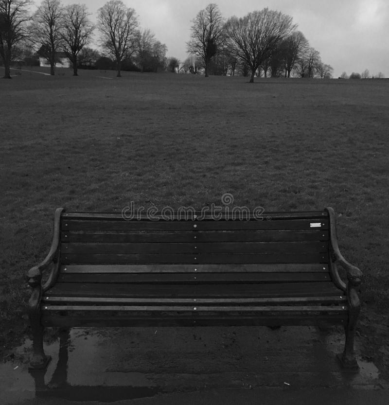 Old Wooden Park Bench royalty free stock photography