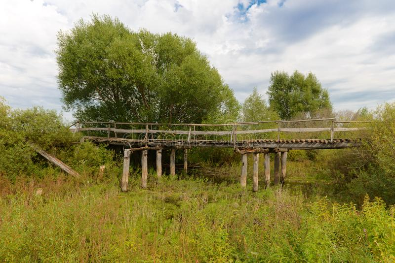 Old wooden crumbling bridge amidst green vegetation. On a summer day royalty free stock image