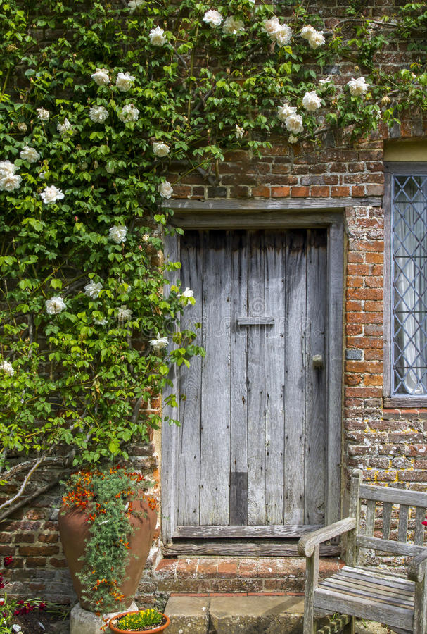 Old Wooden Door Framed By White Roses Stock Photo Image