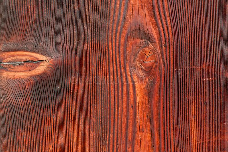 Download Old wooden door texture stock image. Image of bear, hardwood - 28536313