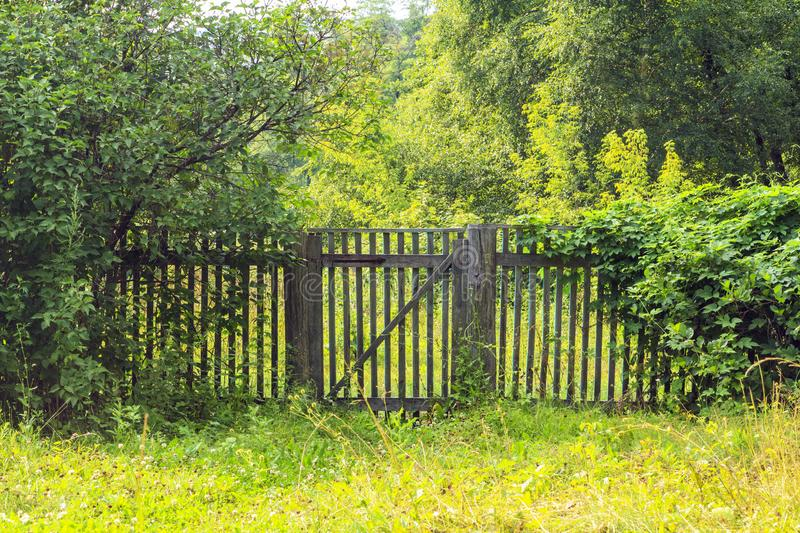 Old wooden enclosure with gate in forest in countryside. Green grasses and trees in sunny day.  stock photos