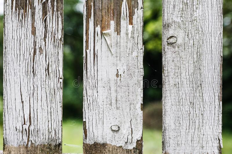 Old wooden fence fragment with white peeled paint, abstract texture.  stock image