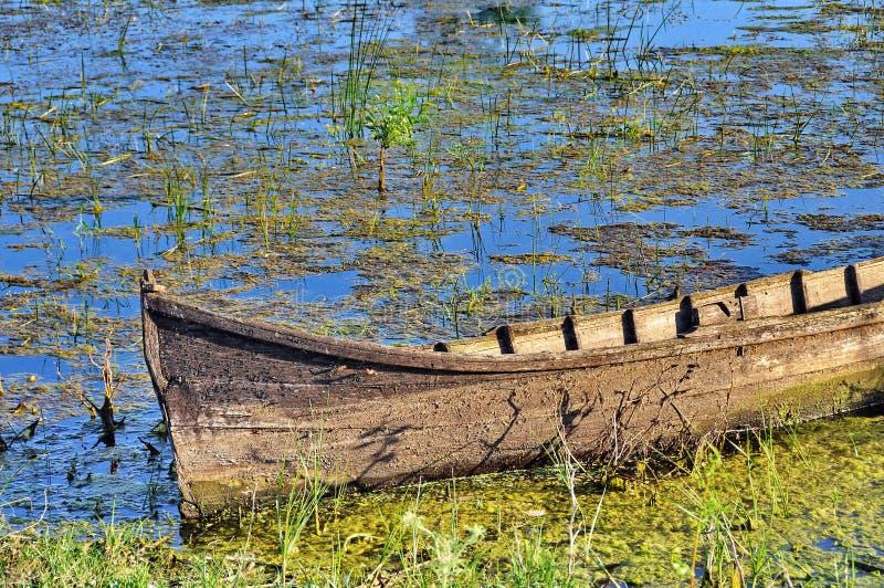 Boat in Danube Delta royalty free stock image