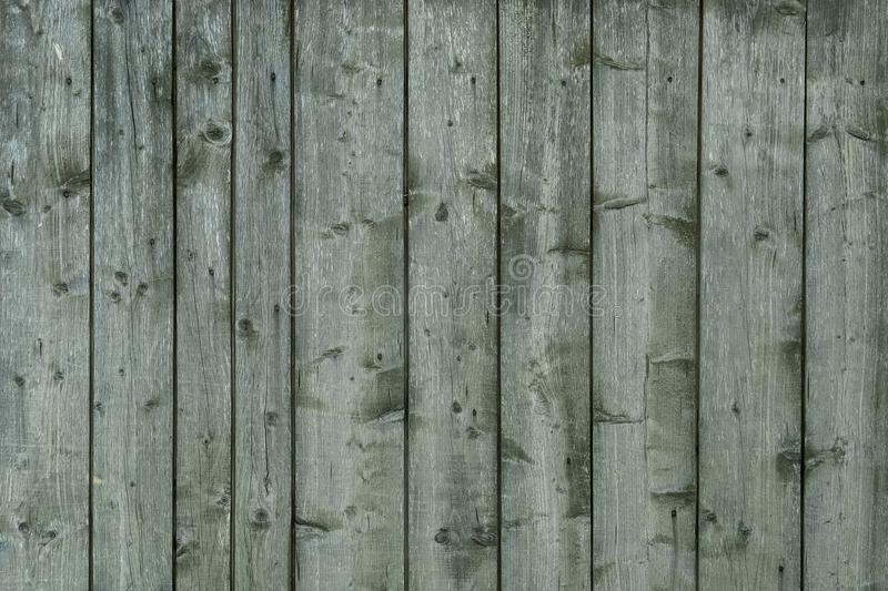 Old wooden green texture background, close up royalty free stock photography