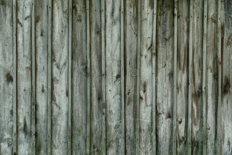 Old wooden green texture background, close up stock photos