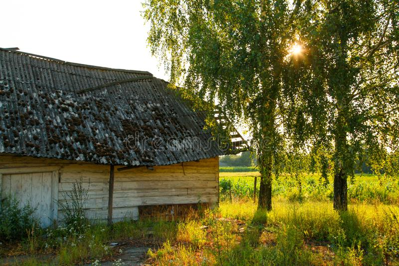 Old wooden house-barn on summer fields royalty free stock images