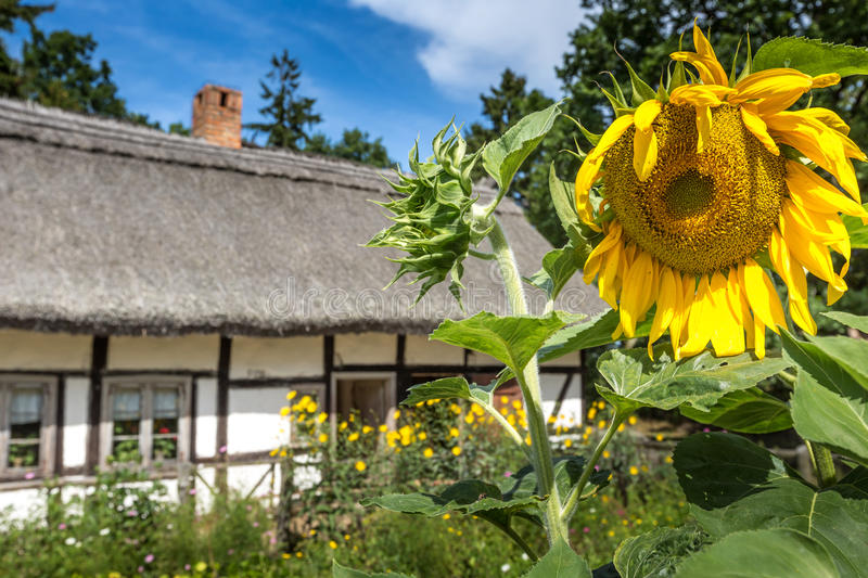 Old wooden house in Kluki, Poland royalty free stock image