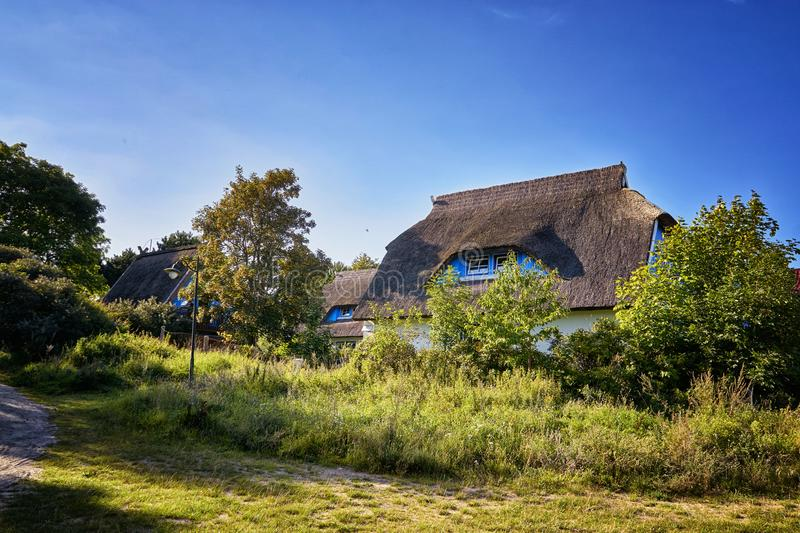 Old wooden houses with reed roofs behind the trees in Hiddensee. Architecture, background, building, country, culture, garden, green, home, landscape, rural stock photos