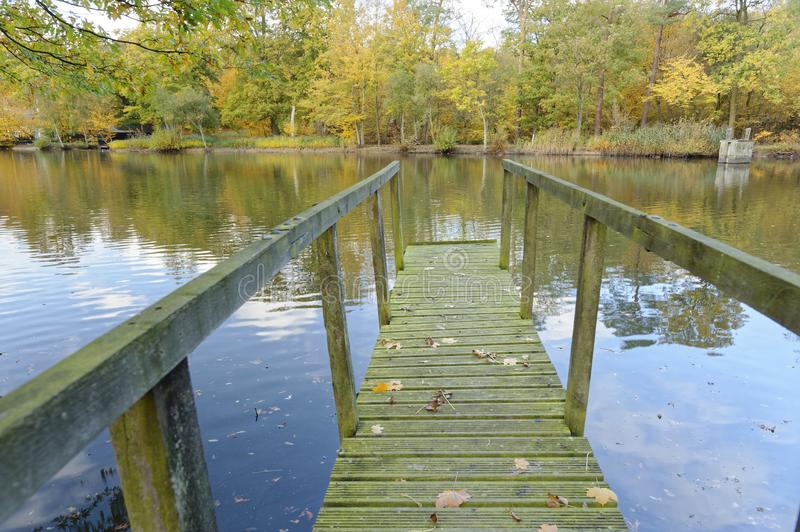 Old wooden jetty on an autumn day. fall leaves and vanishing point. An old wooden jetty over a lake with autumn leaves and tree reflection, knebworth stock photos