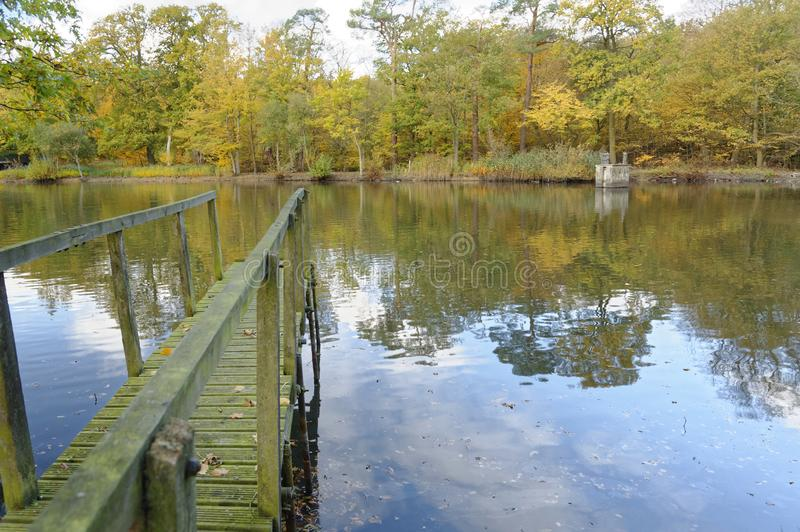 Old wooden jetty on an autumn day. fall leaves and vanishing point. An old wooden jetty over a lake with autumn leaves and tree reflection, knebworth royalty free stock photo