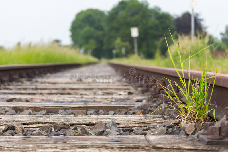 Old wooden railway sleepers on an forgotten railroad. View upon old railway sleepers of an old railway that hasn´t been used for a long time. green grass royalty free stock images