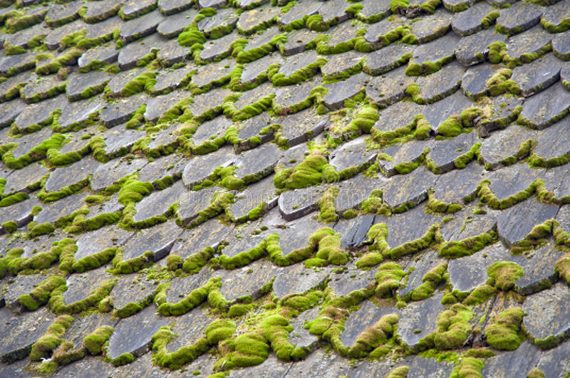 Old Wooden Roof Royalty Free Stock Images