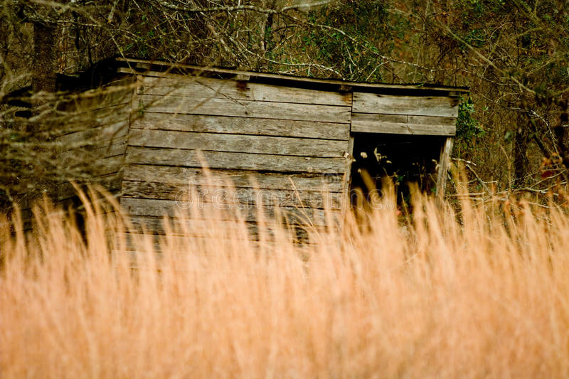 Old Wooden Shed HIdden by Tall Grass stock images