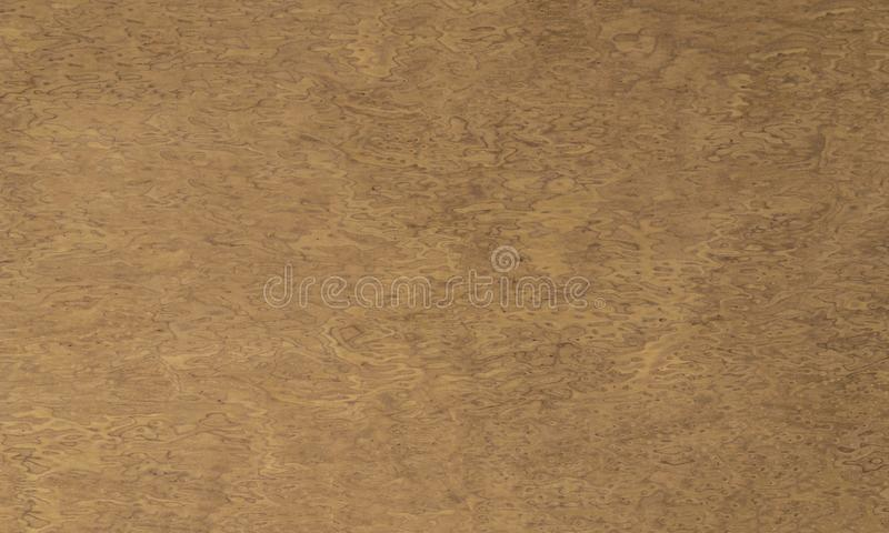 Old wooden spotted surface with stains on the surface. Texture. Background. stock image