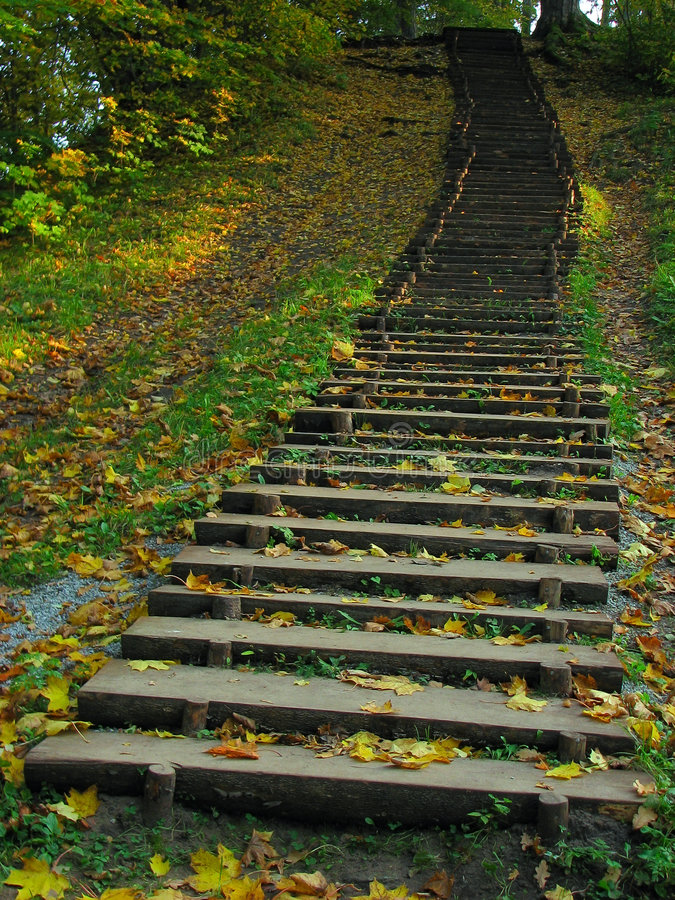 Free Old Wooden Staircase Stock Photo - 3336320