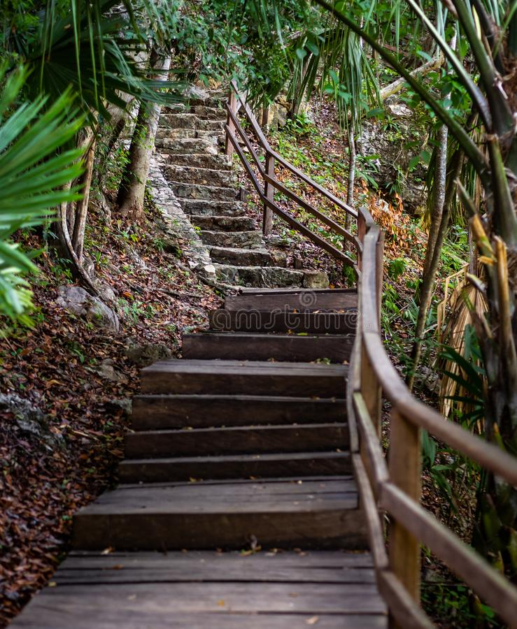 Old wooden and stone staircase leading up a hill in the jungle stock photos