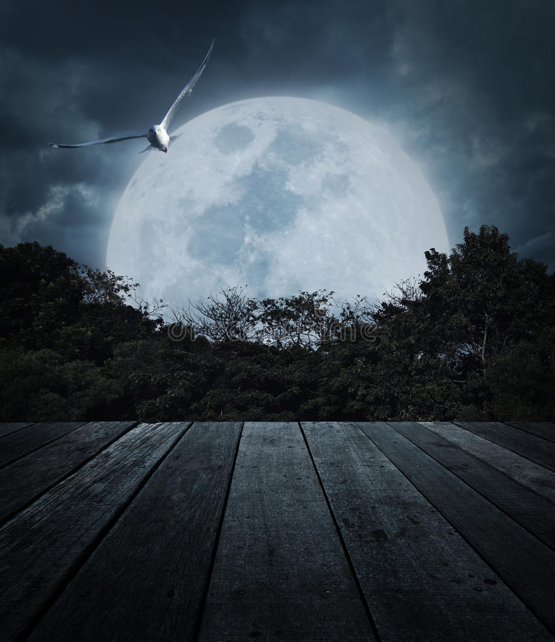 Old wooden table over tree, moon, bird and spooky cloudy sky, Ho royalty free stock photo