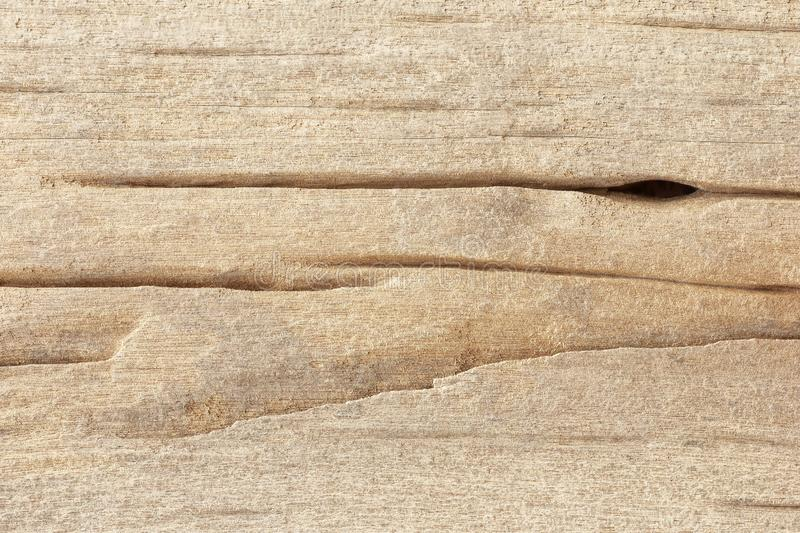 Old wooden texture background, wood surface eroded by time. Old wooden texture background, wood surface pattern eroded by time stock image