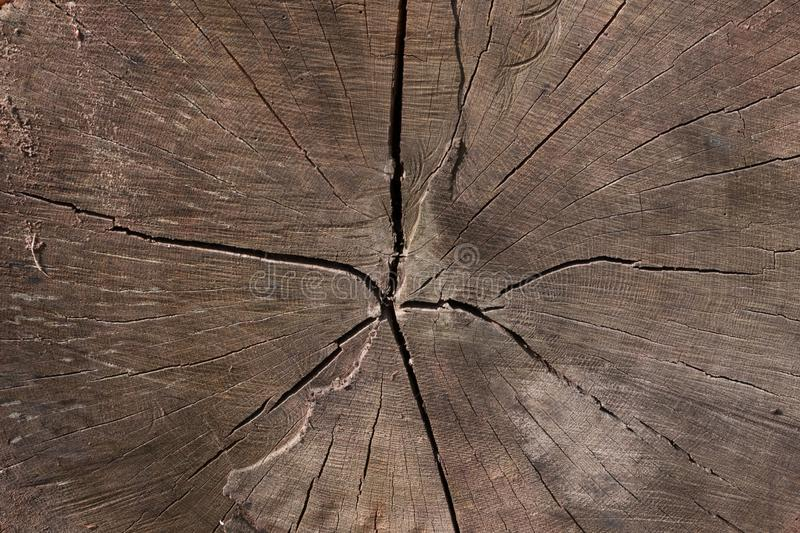 Old Wooden Texture or Dark Brown Wood Grain Background royalty free stock photo