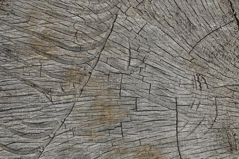 Old wooden texture natural color, cracked from time. Close up view stock photos
