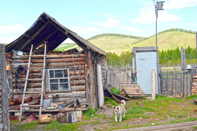 An old, wooden village house. Beggar, an abandoned village. Russia royalty free stock photography