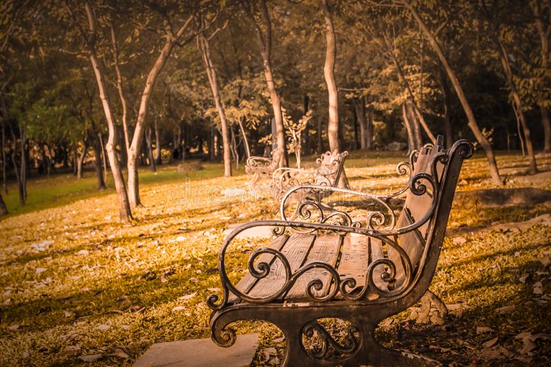 Vintage Park Bench In The Morning Stock Image Image Of