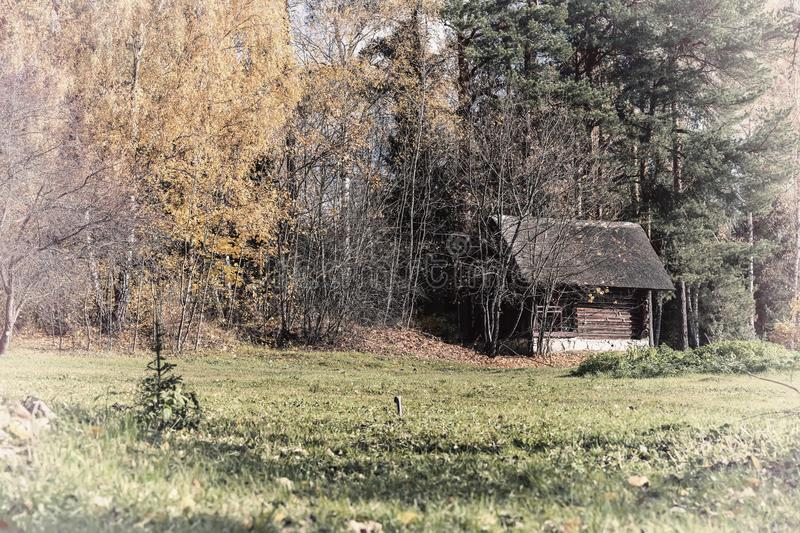 Old wooden vintage rural shed, country yard on the fringe of the forest of the picturesque forest in autumn. Solitary. Life, lifestyle, seasons royalty free stock photo
